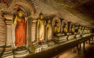 8 Day Group Highlights Tour of Sri Lanka