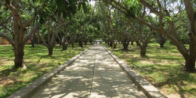 Thilanka Resort And Spa, Dambulla