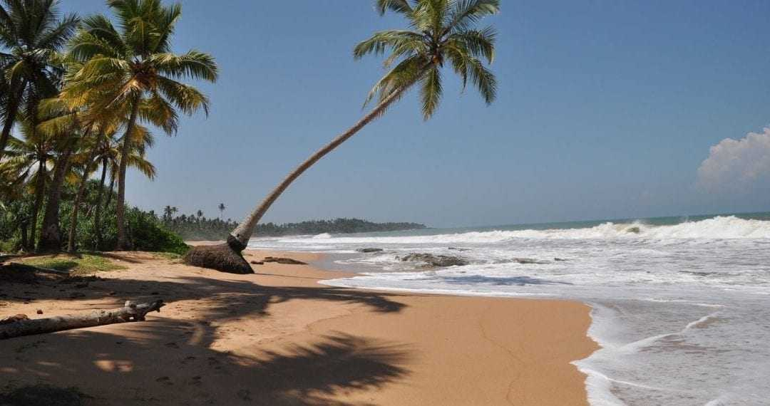 15 Day Group Family Holiday in Sri Lanka