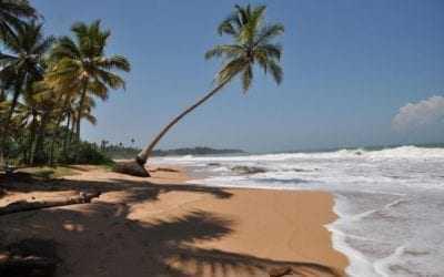 Best month to visit Sri Lanka