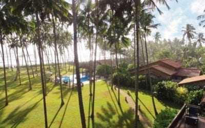 Our 3 Sri Lankan holiday tips