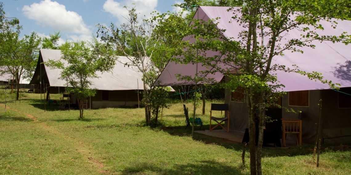 Big Game Camping in Yala National Park (and UDE Walawe, Wilpattu)