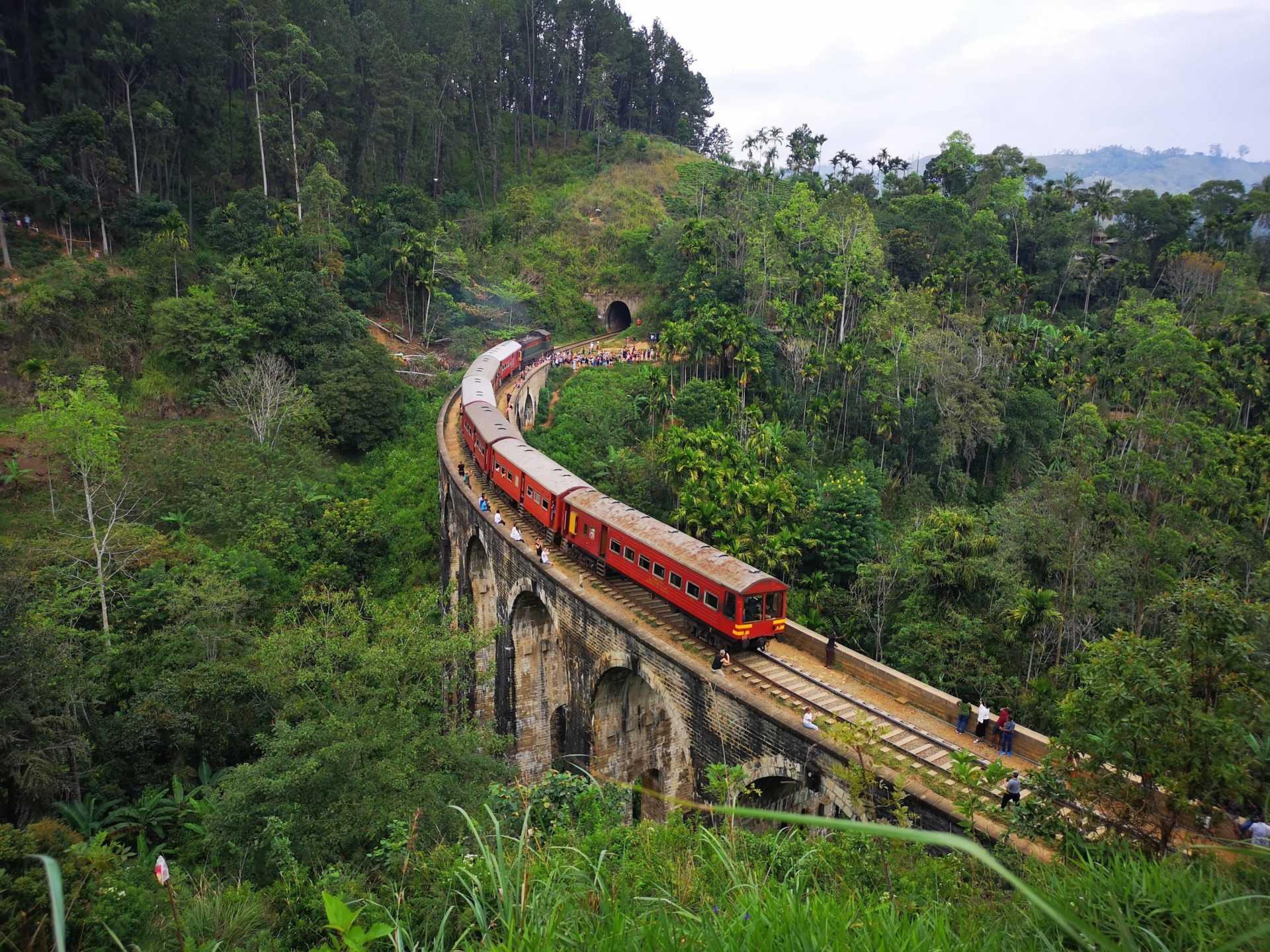 Train ride from Pattipola through the tea plantations to Ella