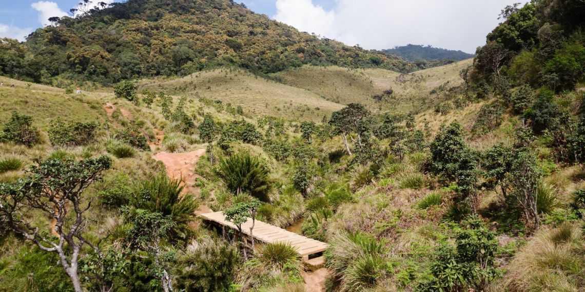 Trekking the Horton Plains in Sri Lanka