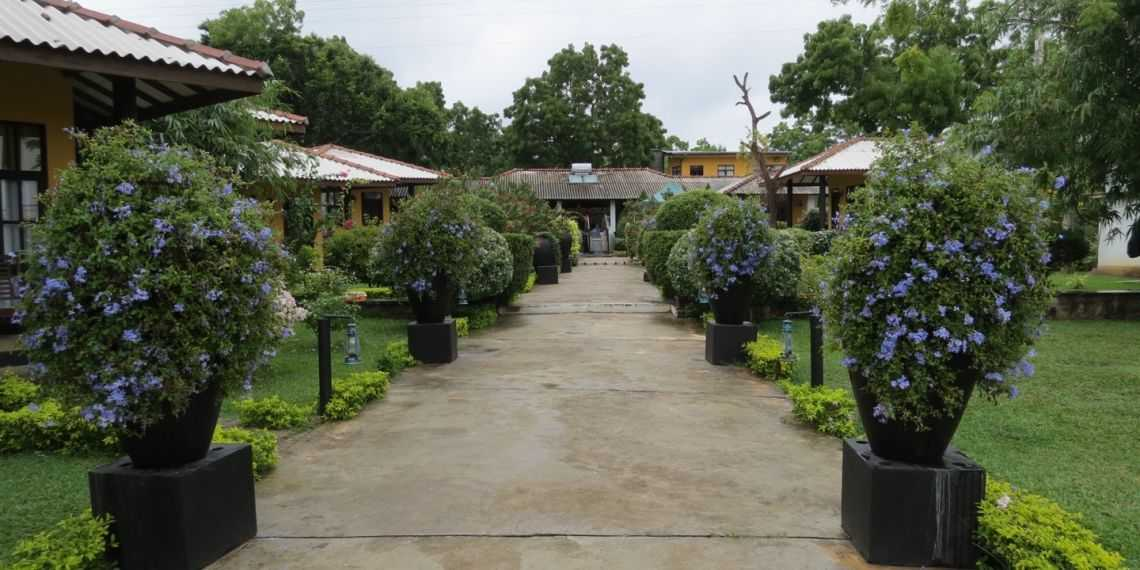 Flower Garden Lake Resort near Yala National Park