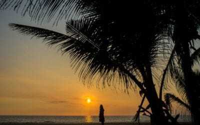 Tailor-made holiday tours in Sri Lanka