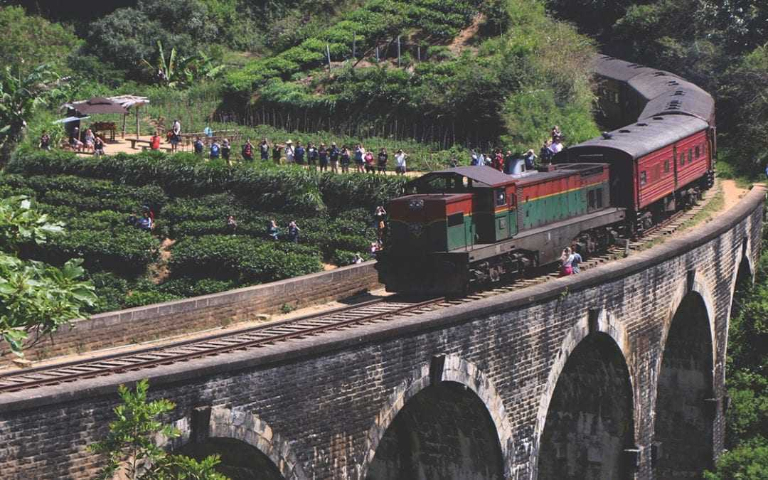 15 Day Sri Lanka Itinerary for Groups