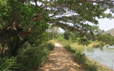UK foreign office lifts travel ban on Sri Lanka