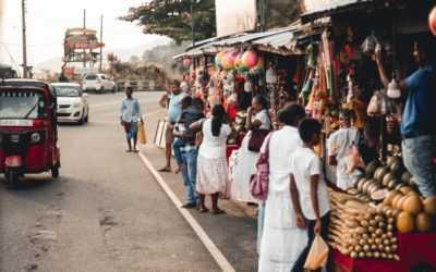 When to Travel to Sri Lanka